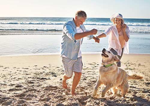 Playa, jugando con el perro